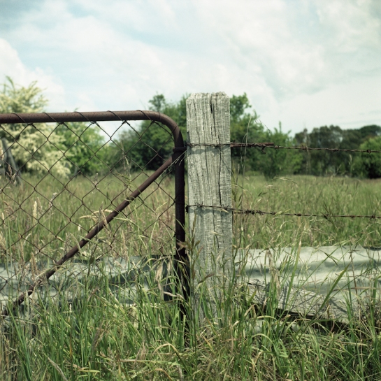 Malmsbury Fence